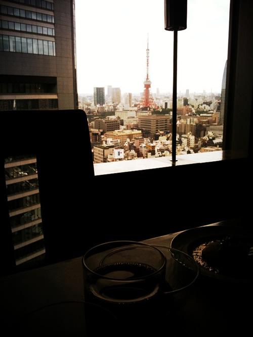 日本に到着。私が想像していた東京では無かった。